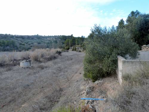 Torre del Compte - Rural property of approximately 1 ha